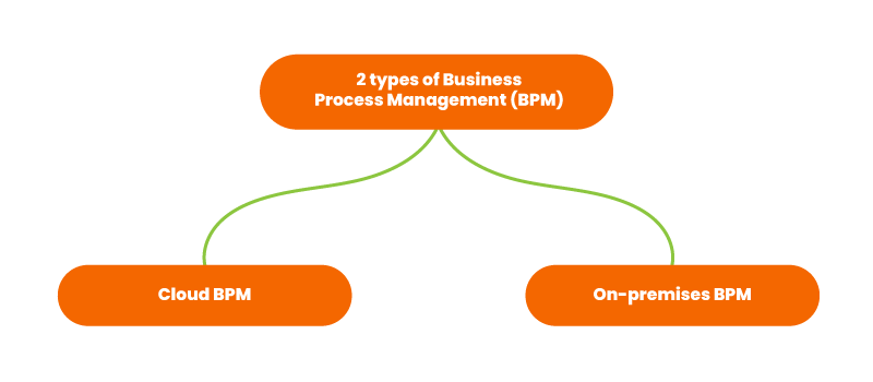 2 types of business process management
