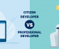 citizen developer vs professional developer