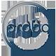 Probo Assurance Services