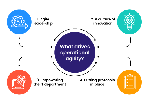 What drives operational agility?